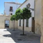 En skyggefuld plads foran en af Antequeras utallige gamle kirker.